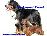 http://www.leearmand.com/images/LEEARMAN.JPG